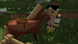 Minecraft Horse Pron [Sebie X Horse]