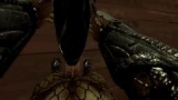 Xenomorph & Predator DEMO
