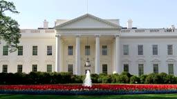 Shameless in D.C. Malia & Donald