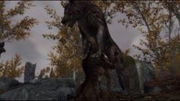Khajiiti Plague Wolf Breeder
