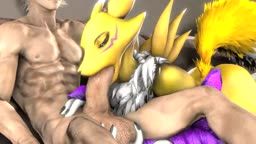 Renamon Blowjob Loop