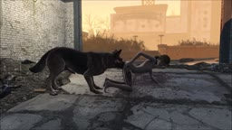 Fallout 4 Dog Outdoors