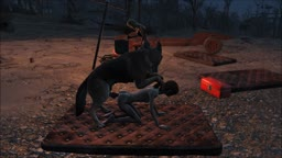 Fallout 4 the evening dog