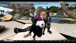 Nekkie and Nyarl at the beach