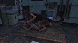 Fallout 4 My kind Canigou