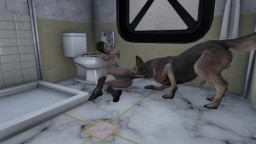 Fallout 4 A good dog in the toilet